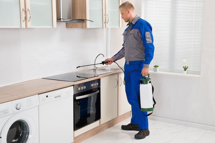 kitchen risks and how it can It highlights some of the common hazards associated with an office based  environment, tips on what you can do to help yourself stay healthy and tips on  what.