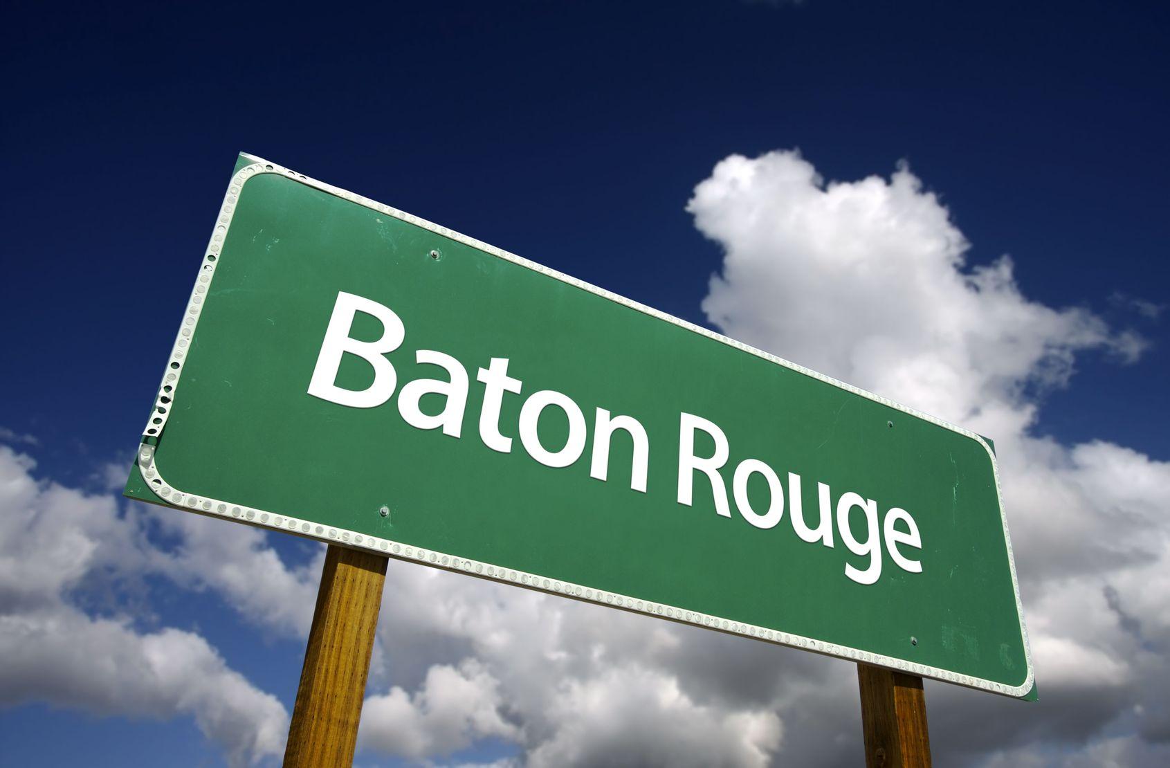 Baton Rouge Pest Control Categories Arrow