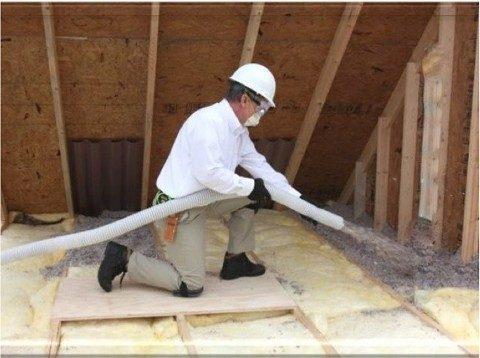 5 Benefits Of Pest Control Insulation Arrow Termite Amp Pest