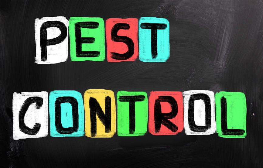 Do Sound Machines Actually Repel Pests Categoriespest Control